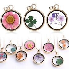 Lucky Wishing Glass Locket Pendant Real Dried Flower Long Sweater Chain Necklace