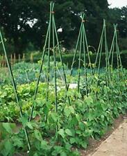 50x EcoStake 3 Feet 1/4 Inch Ecofriendly Plant Stakes Garden Tomato Stakes Green