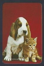 #915.328 Blank Back Swap Card -MINT- Kitten with Basset Hound