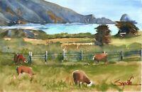 California Cows  :  Signed LE Art Print :  Sandra Watercolors™ California