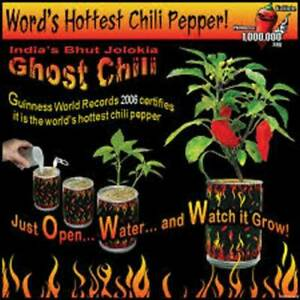 Magic PlantGhost Chili Pepper Bhut Jolokia  Grow Kit In Recyclable Can