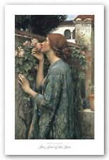 FLORAL PRINT The Soul of Rose John William Waterhouse