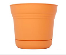 Bloem 14 in Saturn Planter Tequila Sunrise - Sp1420 6 Pack