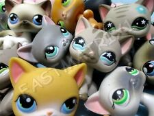 Littlest Pet Shop LPS Lot 2 RANDOM Shorthair Siamese Cats BLEMISHED Authentic