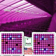 2000w LED Plant Grow Light Full Spectrum Lamp Ip65 Indoor Veg Flower Bloom RoHS
