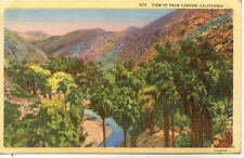 CPA USA ETATS-UNIS PALM CANYON CALIFORNIA