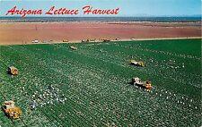 Arizona Lettuce Harvest farm equipment agriculture Postcard