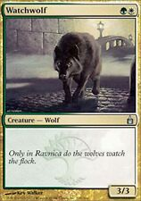 *MRM* ENG 2x Watchwolf ( Loup de garde ) MTG Ravnica