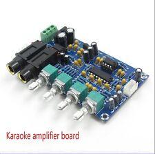 Karaoke OK Reverberries Board Microphone Singing Power Amplifier Board PT2399