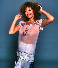 1980's RAQUEL WELCH color  glamour sexy photo (Celebrities & Musicians)