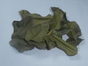 Feuilles de Combava séchées de Madagascar en sachet de 10 gr / Citrus hystrix