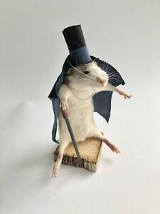Taxidermy Mouse With Top Hat, Cloak & Cane - Made To Order