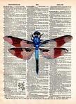 A Dragonfly Bazaar 214