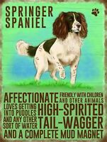 Springer Spaniel fridge magnet   (og)