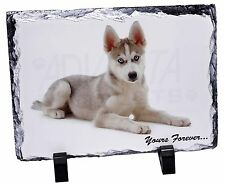 Husky 'Yours Forever' Photo Slate Christmas Gift Ornament, AD-H54ySL