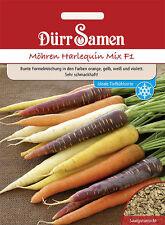 Möhren Möhre Harlequin F1 Mix Naschgemüse für Kinder ca. 500 Korn Dürr Samen