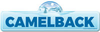 Camelback Street Sign | Snowboarder, Décor for Ski Lodge, Cabin, Mountian House