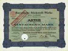 Bayerische Stickstoff Werke AG 1908 München SKW Trostberg Degussa Hüls Bielefeld