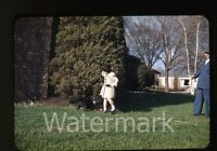 1950s red border Kodachrome photo slide Young Girl and dog by tree