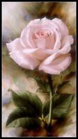 Single Rose - DIY Chart Counted Cross Stitch Patterns Needlework 14 ct Aida