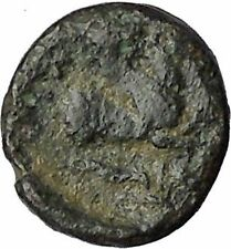 Lampsakos in Mysia 400BC Rare Ancient Greek Coin Female head Pegasus  i50556
