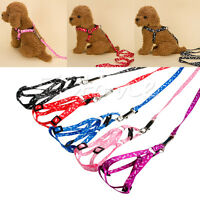 Pet  Dog Puppy Cat Kitten Rabbit Harness Collar Leash Lead Adjustable