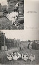 COMPLETE POULTRY KEEPER & FARMER 1938 Leslie Pearce-Gervis **GOOD USED COPY**