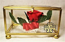 vtg Lifesake preserved Real Rose collectible handcrafted glass box curio USA euc