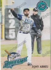 2017 Bridgeport Bluefish Tony Abreu Atlantic League Independent