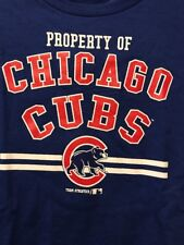 NEW Chicago Cubs MLB Genuine Merchandise Youth 10-12 M Cotton Blue Tee T-Shirt