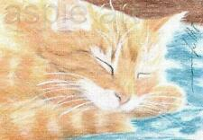 ACEO print limited edition ginger tabby cat catnap by Anna Hoff