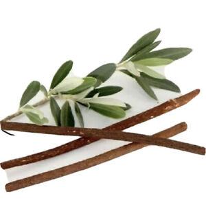 5xThin Zaitoon miswak Meswak Sewak 100% Natural Organic brush Hygenic antiseptic