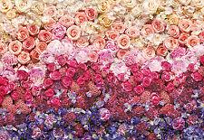 Komar Foto Mural Mural 8-965 INTENSE FLORES ROSAS ROSA AMARILLO 368 x 254cm