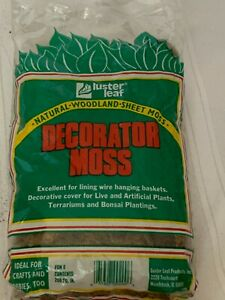 Luster Leaf Craft Decorator Sheet Moss 200 Square Inches Hobby Train Terrariums