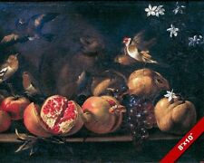 Pomegranates Grapes Birds & Squirrel Fruit Painting Food Art Real Canvas Print