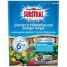 Substral OSMOCOTE Camera & VASO Fertilizzante CONO 25 Stück - düngekegel