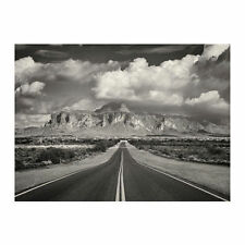 Ikea Bjorksta Picture Superstition Mountains USA 303.205.47 Picture Only
