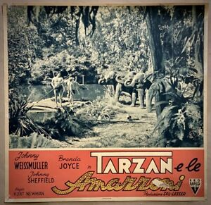 TARZAN E LE AMAZZONI - Lobby Card Fotobusta -Johnny Weissmuller, Joyce-1945 -