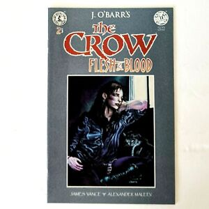THE CROW: Flesh and Blood #2 Kitchen Sink Press (1996) J.O'Barr