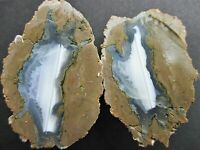 Priday Richardson Small Unpolished Oregon Thunderegg Pair - White Banded Agate