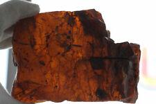 074 raw amber stone rock 352.8g for misbah 100% natural Baltic kahrab Polandi