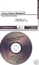 KENNY WAYNE SHEPHERD Hey What Do EDIT PROMO CD Single