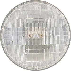 Headlight Bulb-Standard - Single Commercial Pack Philips H6006C1