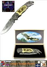 Eagle Folding Knife with Carved Handle and display box