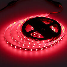 5Mtrs 300 LED Red NON Waterproof 12 Volt Self Adhesive Light Strips