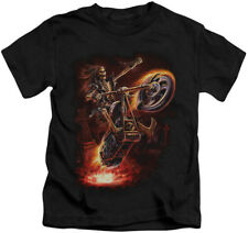 Anne Stokes/Mountain T Shirt of Hell Rider       Size Large