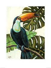 Louise Brown (Tropical Toucan) Art Print   PPR51077 60 x 80cm cheese plant