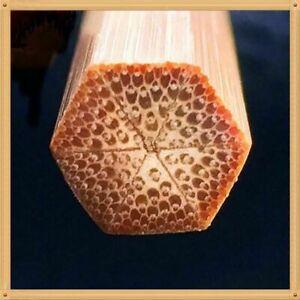"Bamboo Baitcasting Fishing Rod 6'6"" (1.98 m) / 2-piece 1-tip"