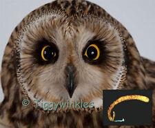 CHARITY VIRTUAL GIFT - OWL - GAPEWORM TREATMENT - Tiggywinkles