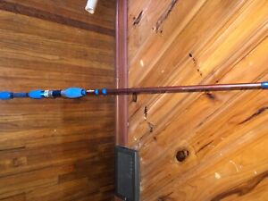 Custom Spinning Rod
